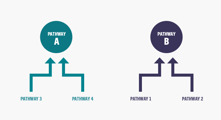 Illustration of proposal to combine pathways 1 and 2, and 3 and 4